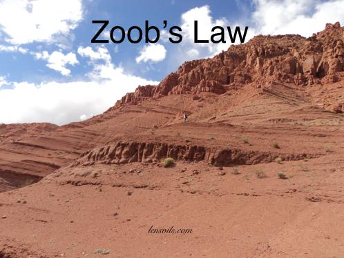 Zoob's Law