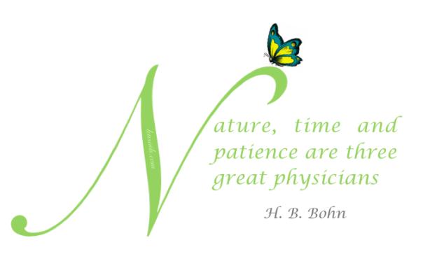 Nature H.B. Bohn