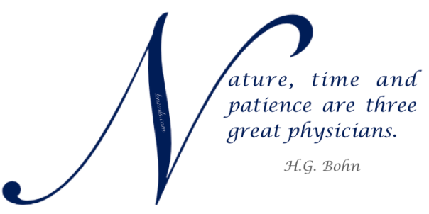 Health Proverb H.G. Bohn