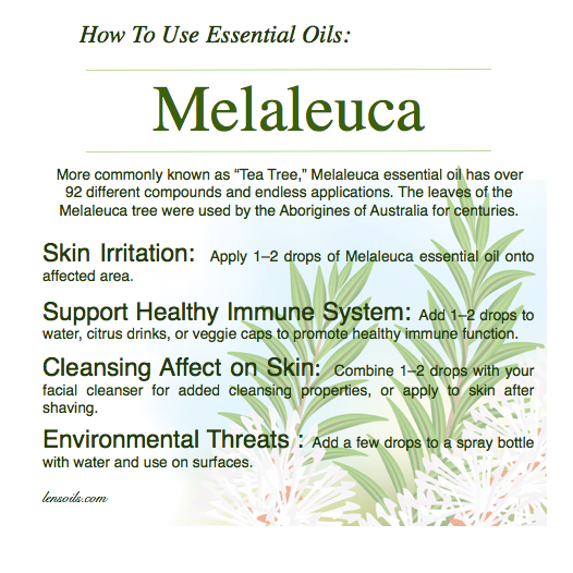 How to Use Melaleuca Essential Oil