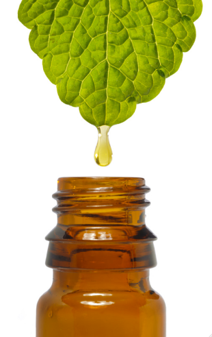 Leaf Oil Bottle