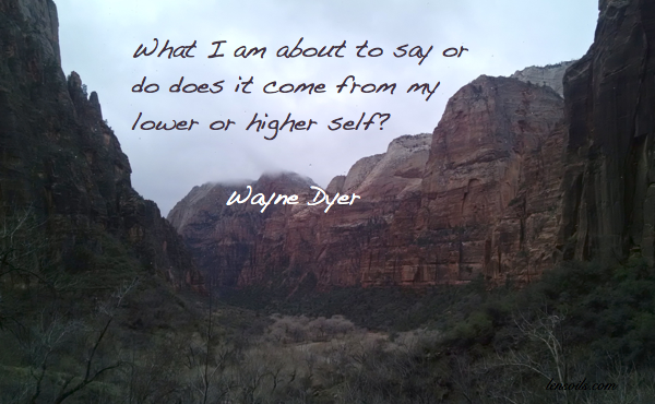 Wayne Dyer lower or higher self