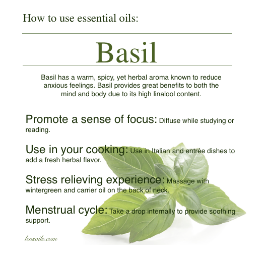 How to use basil essential oil