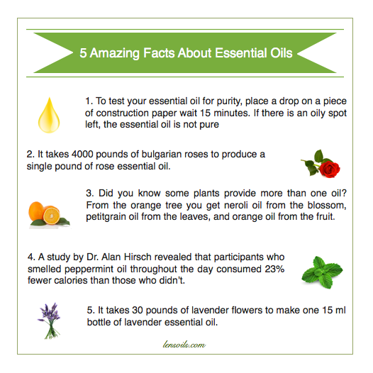 5 Amazing Fun Facts About Essential Oils