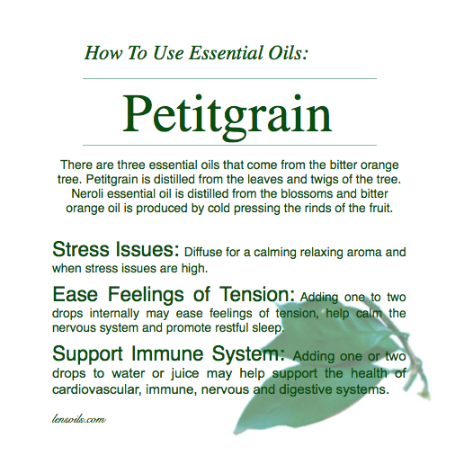 how-to-use-petitgrain-essential-oil