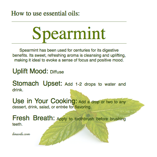How to Use Spearmint Essential Oil