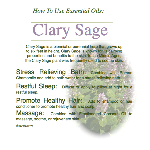 how-to-use-clary-sage-essential-oil