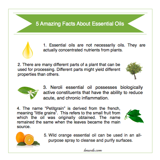 5 Amazing Facts About Essential Oils #4.png