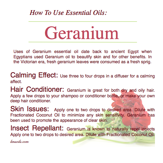 How to use geranium essential oil.png