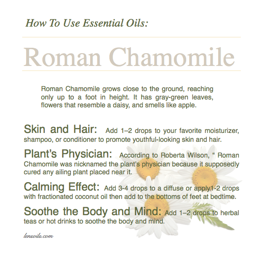 How to use Roman Chamomile essential oil.png