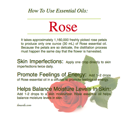How to use rose essential oil.png