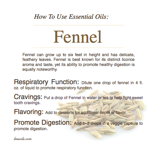 how-to-use-fennel-essential-oil