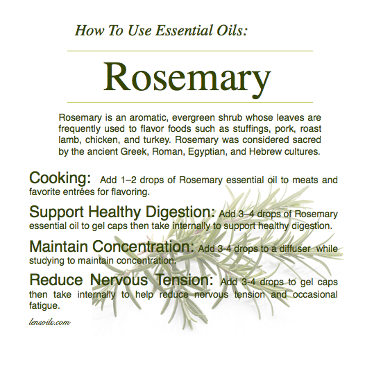 How to Use Rosemary Essential Oil.png