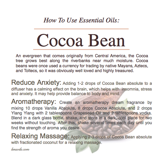 How to use cocoa bean essential oil