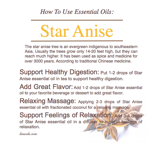 How to Use Star Anise.png
