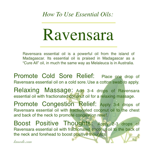 How to use Ravensara essential oil.png