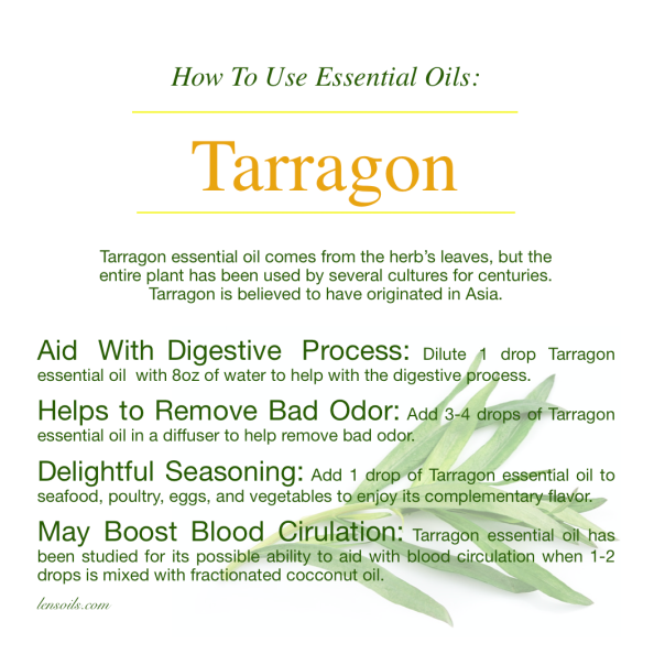 How to Use Tarragon Essential Oil.png