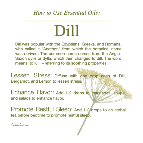 How to Use Dill Essential Oil.png